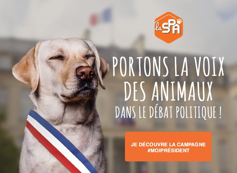 portons la voix des animaux dans le d bat politique